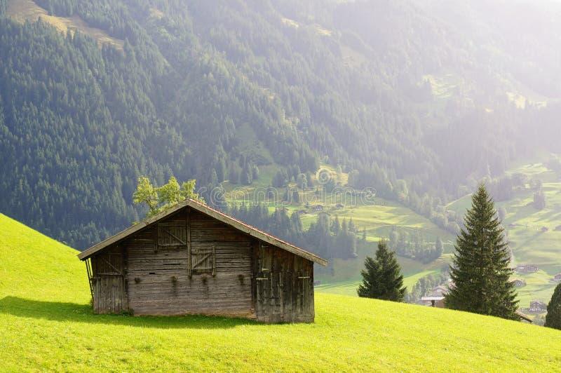 一点房子和绿色领域与山作为背景在雨天 grindelwald瑞士 库存图片