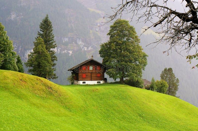 一点房子和绿色领域与山作为背景在雨天 grindelwald瑞士 免版税库存照片