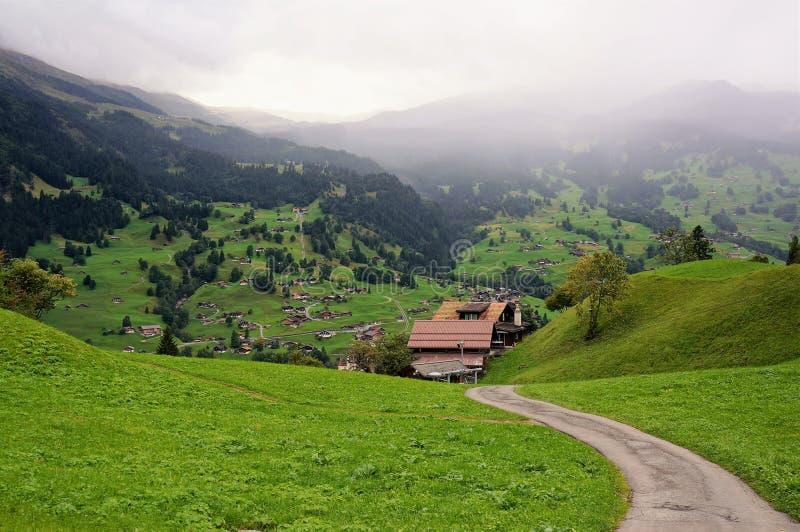 一点房子和绿色领域与山作为背景在雨天 grindelwald瑞士 免版税库存图片