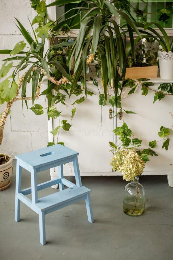 一点木梯凳在家内部与背景的绿色植物 免版税库存照片