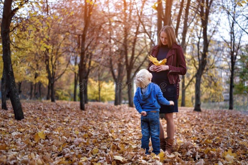 一点白肤金发的男孩给他怀孕的母亲黄色叶子 背景的秋天公园 免版税库存照片