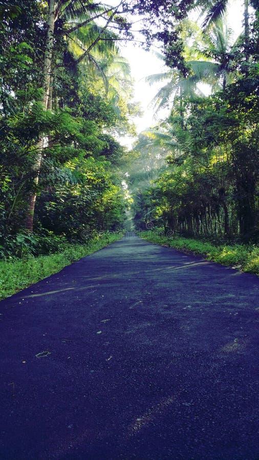 一点路在我的村庄 库存图片