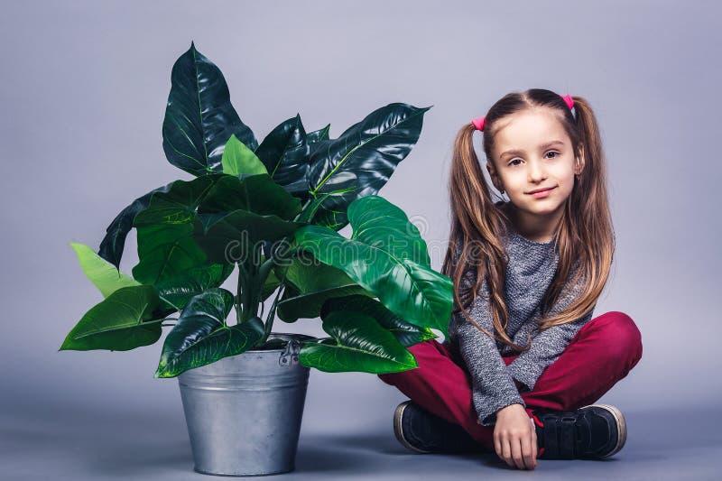 一点逗人喜爱的女孩坐地板在桶的大室内植物附近 免版税库存图片