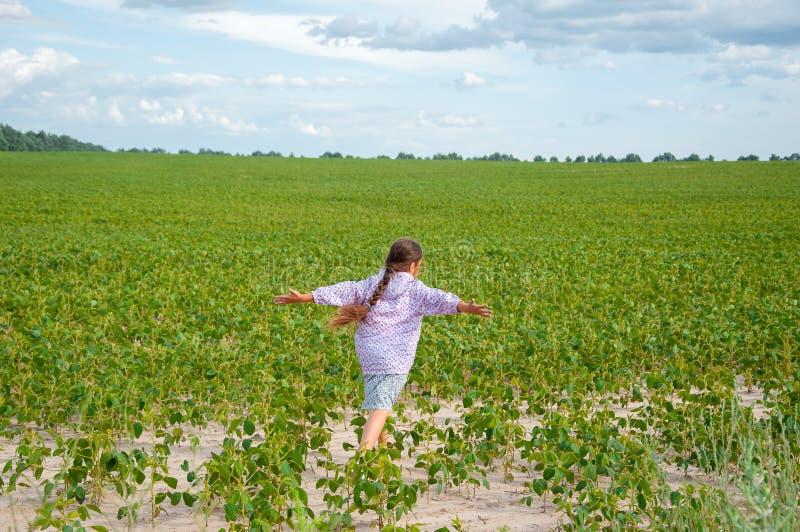 一点逗人喜爱的女孩跑横跨大豆领域的,夏天 库存照片