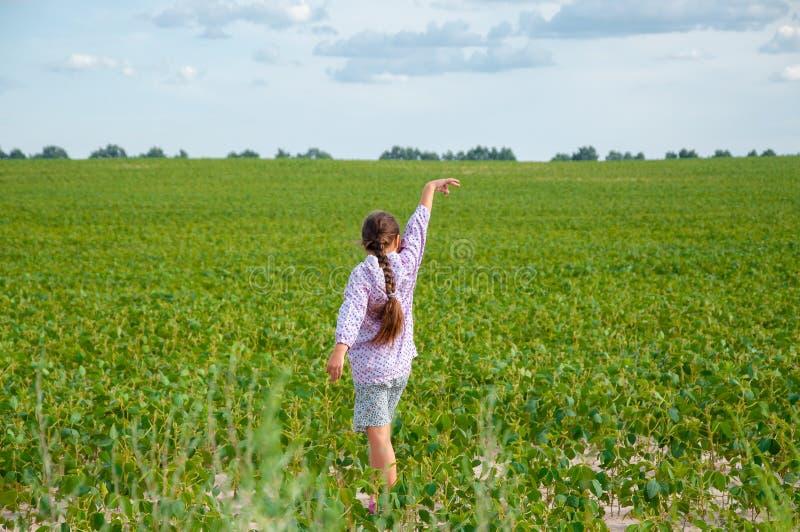 一点逗人喜爱的女孩跑横跨大豆领域的,夏天 免版税库存照片