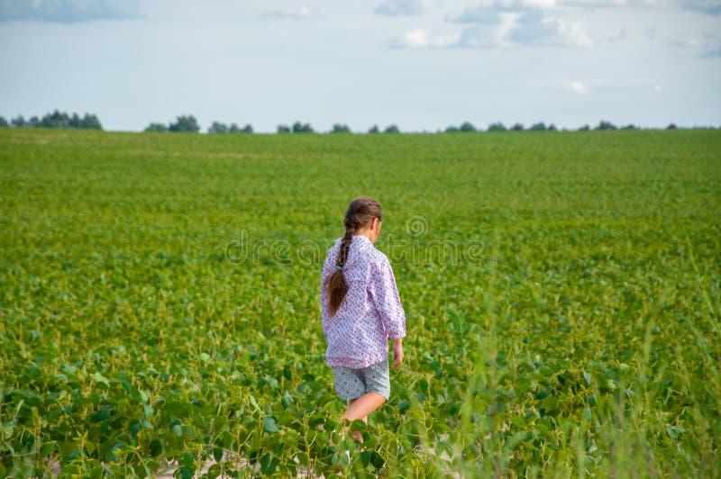 一点逗人喜爱的女孩跑横跨大豆领域的,夏天 库存图片