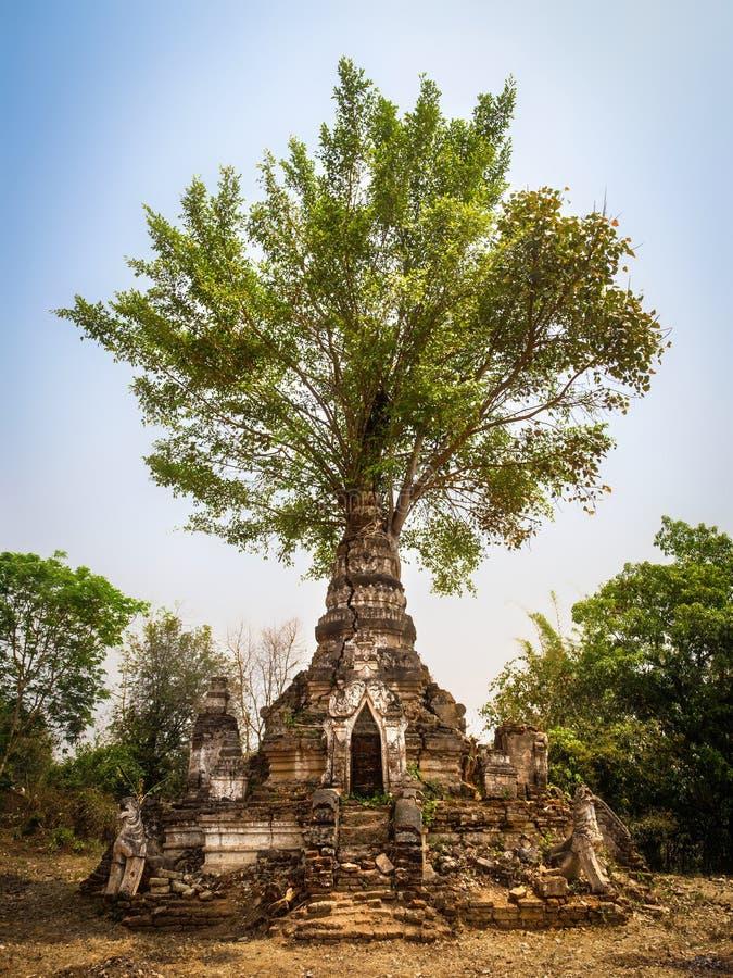 一点Bagan的古老塔, Hsipaw,掸邦,缅甸 库存图片