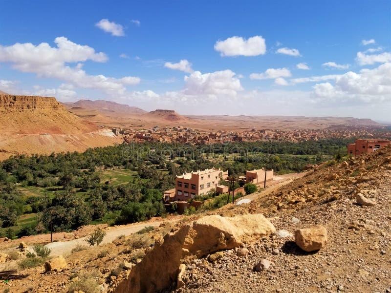 一片小的绿洲在沙漠 免版税库存图片