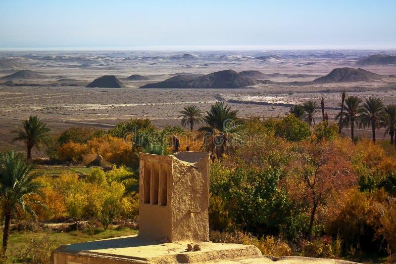 一片绿洲的秋天在沙漠 免版税库存图片