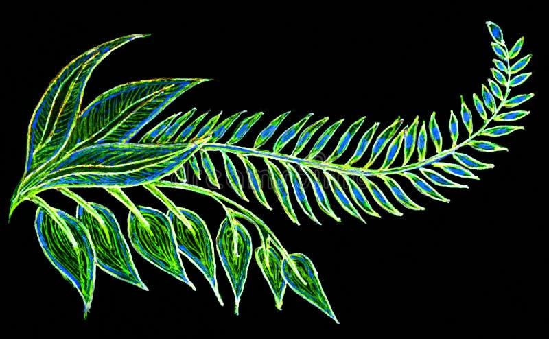一片羽毛似五颜六色的叶子的手图画 皇族释放例证
