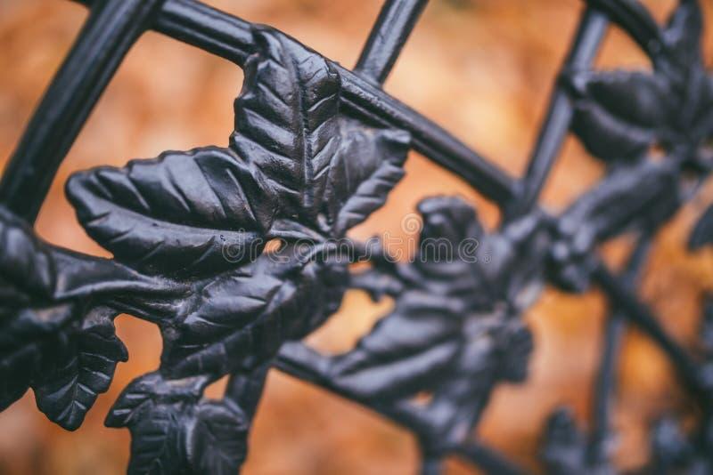 一片装饰生铁篱芭和秋天橙色叶子的图象作为背景 免版税库存照片