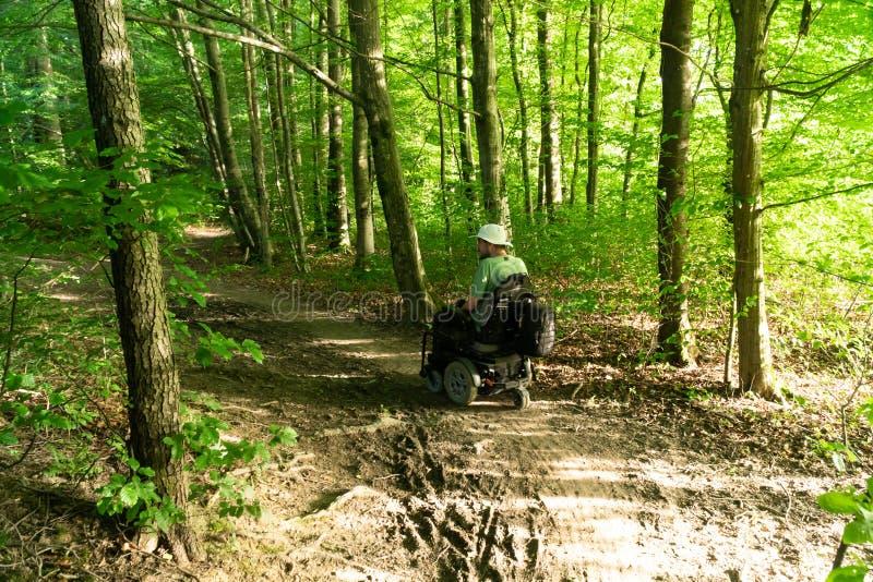 一电轮子乘坐的一个人越野在森林里 免版税库存照片