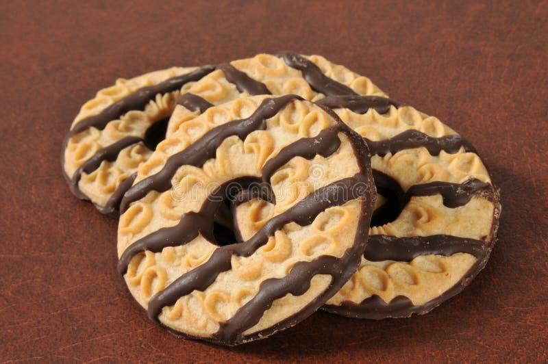 一种油脂含量较高的酥饼 免版税库存图片