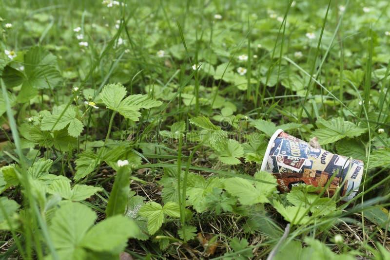 一空的饮用的纸杯在使用说谎在路面,那旁边的灌木以后是一环境污染 免版税库存图片