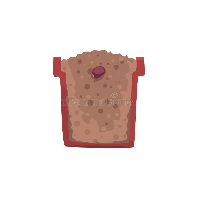 一粒豆的种子在一个罐的有地面土壤的,植物生长阶段,在一个短剖面传染媒介例证的罐 皇族释放例证
