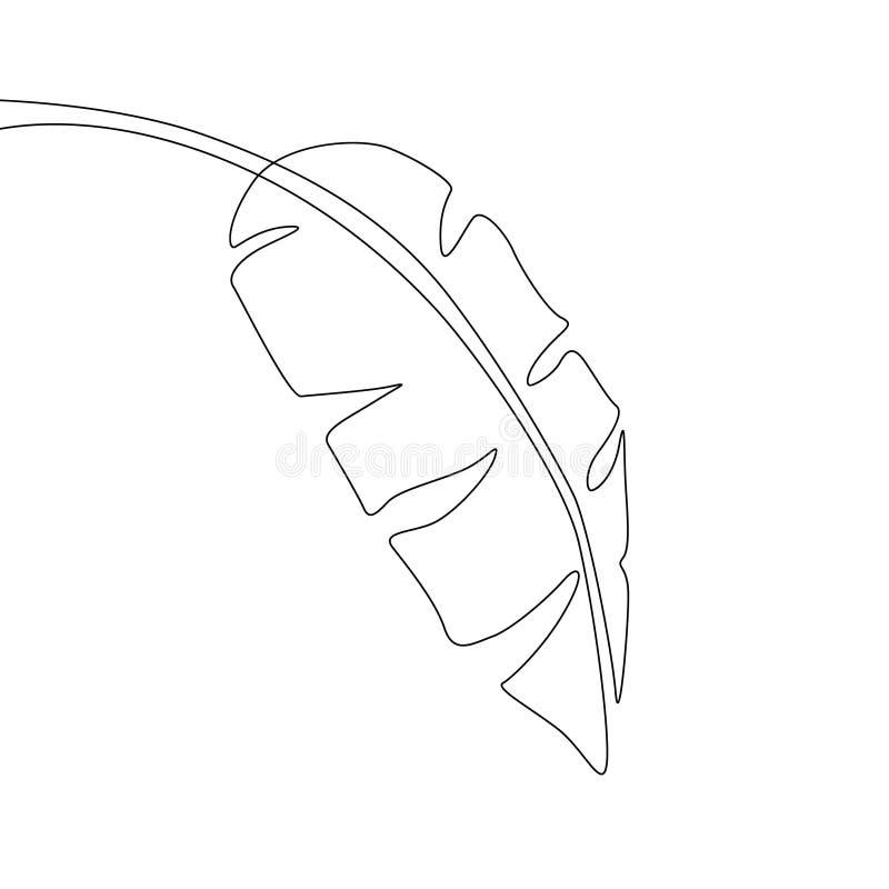 一线描香蕉叶子 实线异乎寻常的热带植物 向量例证