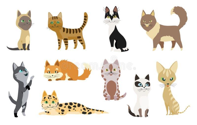 一组有不同颜色毛皮和标记的可爱卡通小猫或猫站立或行走矢量 向量例证