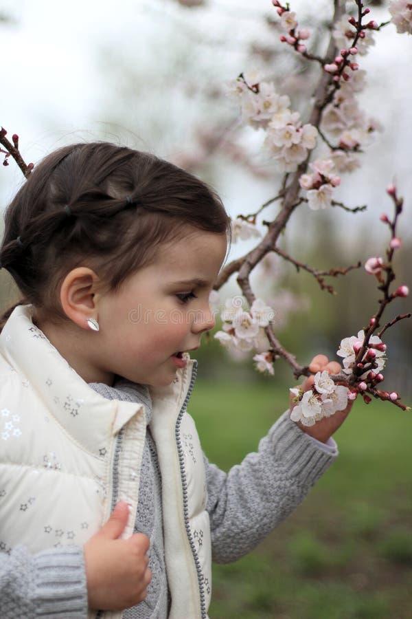 一美丽的快乐的女孩的画象一棵开花的树的背景的 免版税库存图片