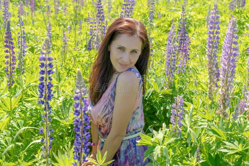 一美女的画象有嫉妒棕色长发的在花的领域 紫色礼服的女孩微笑着和 免版税图库摄影