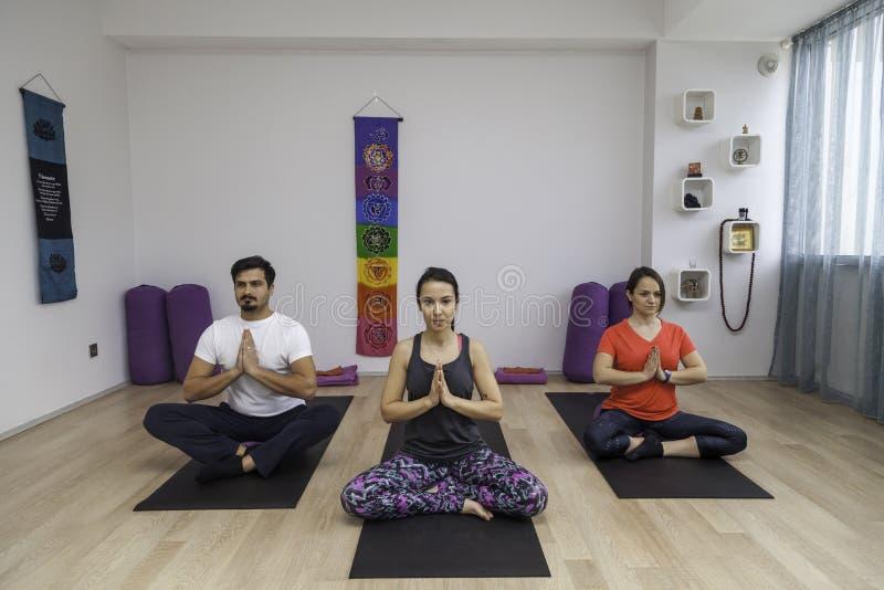 一群人瑜伽的分类 库存图片