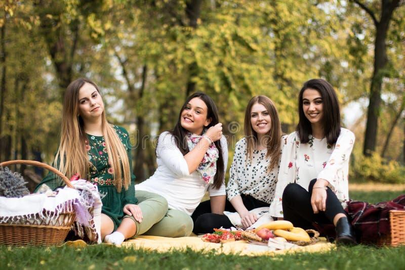 一群年轻女性野餐 库存照片