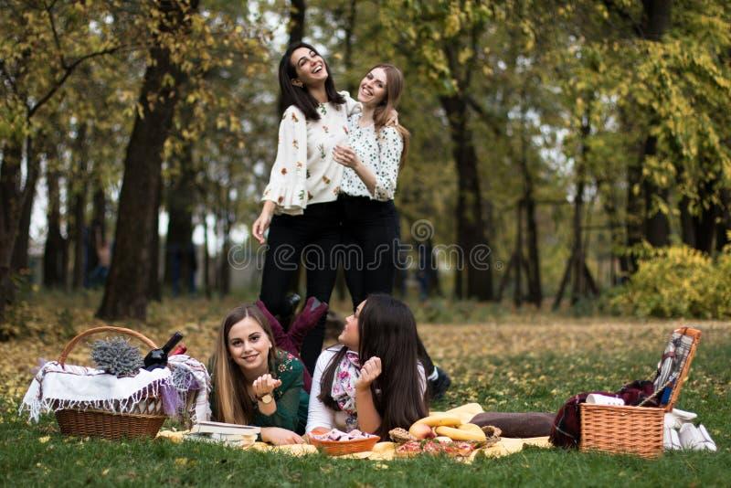 一群年轻女性野餐 免版税库存照片