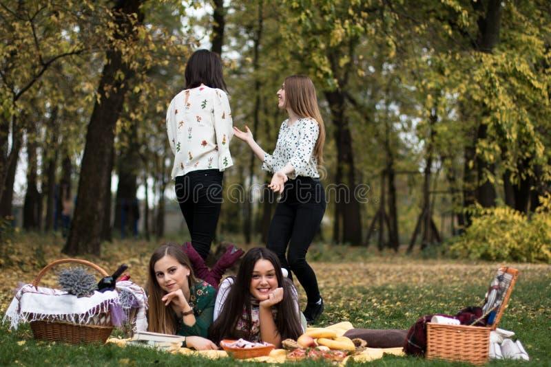 一群年轻女性野餐 图库摄影