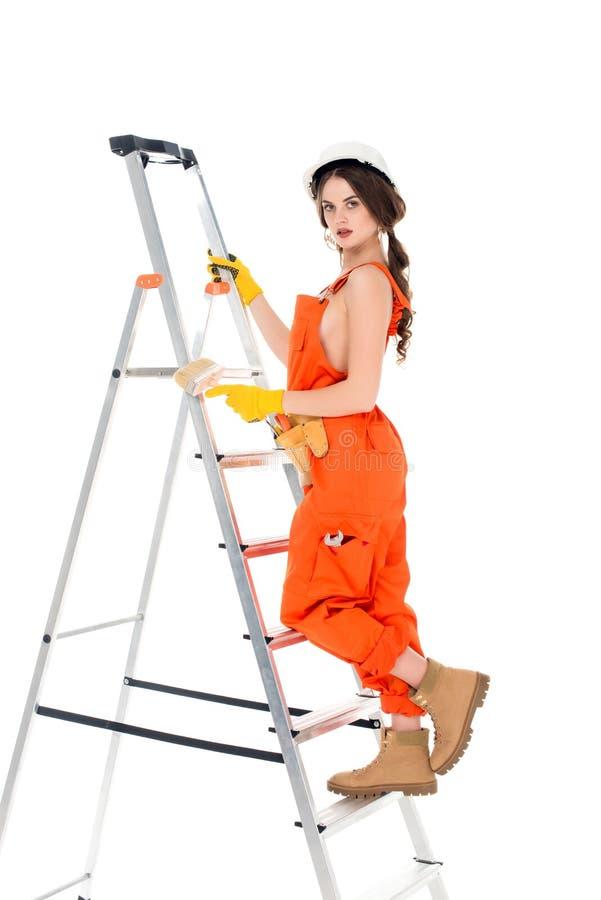 一致的藏品刷子的美丽的在梯子的女工和身分, 库存照片