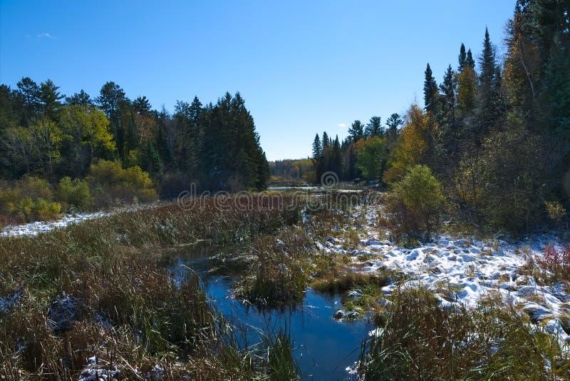 一英里的从来源,湖Itasca密西西比河 库存图片