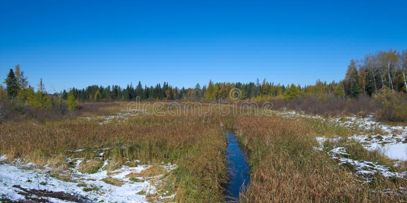 一英里的从来源,湖Itasca密西西比河 免版税库存照片