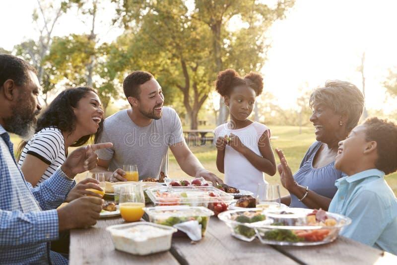 一起享受野餐的多一代家庭在公园 库存照片
