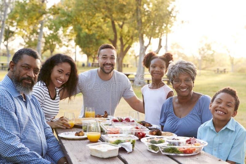 一起享受野餐的多一代家庭画象在公园 免版税库存照片