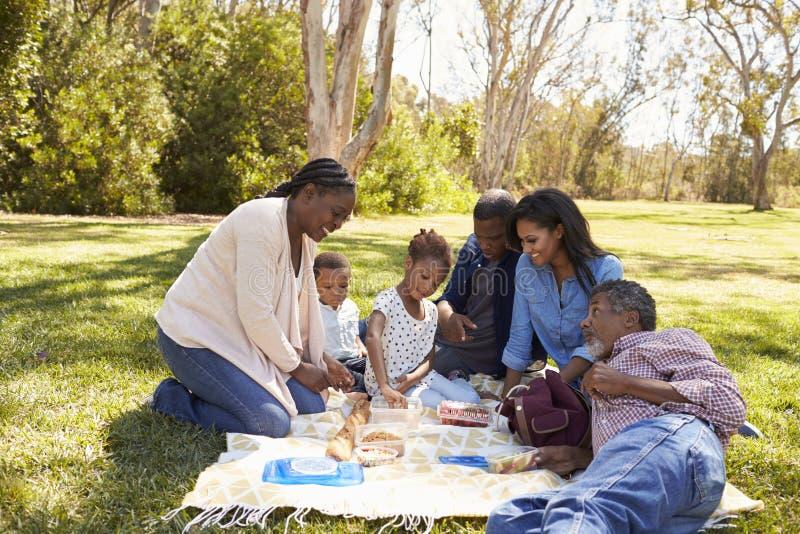 一起享受野餐的多一代家庭在公园 免版税库存图片