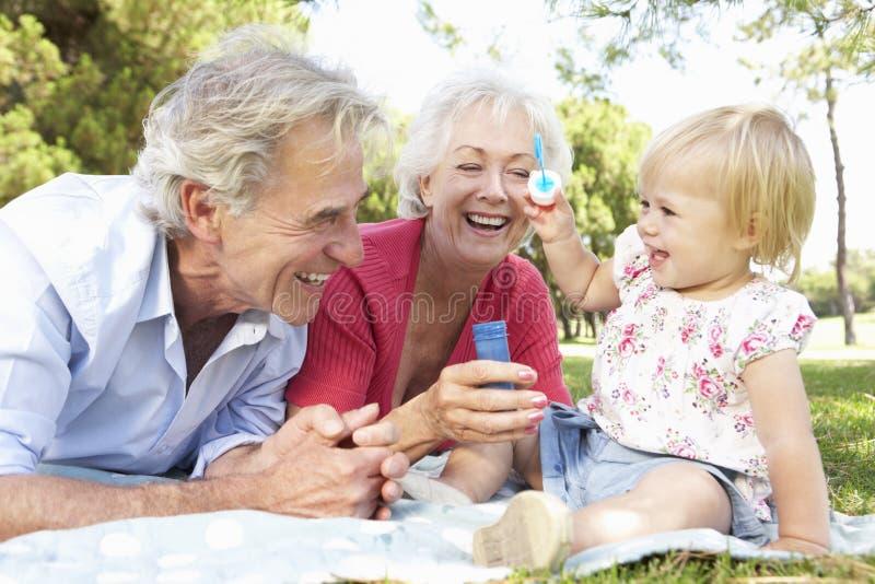一起使用在公园的祖父母和孙女 库存照片