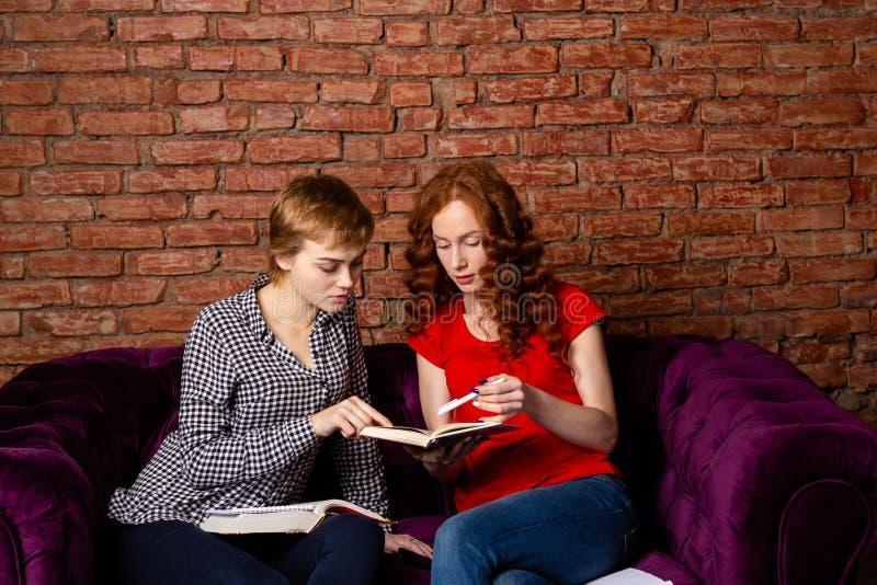 一起做家庭作业的同学女孩 免版税图库摄影