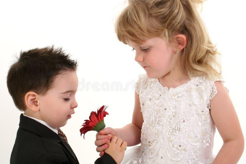 一起嗅到年轻人的可爱的儿童雏菊 免版税库存图片