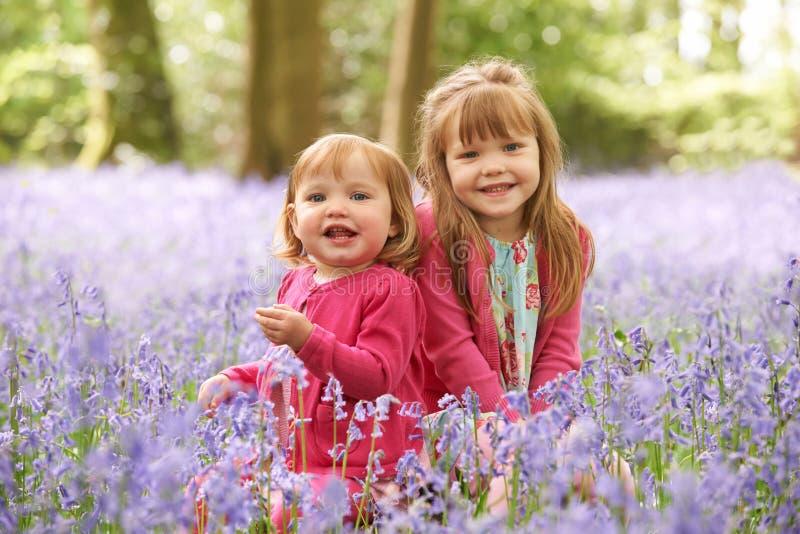 一起坐在会开蓝色钟形花的草森林的两个女孩 免版税库存图片