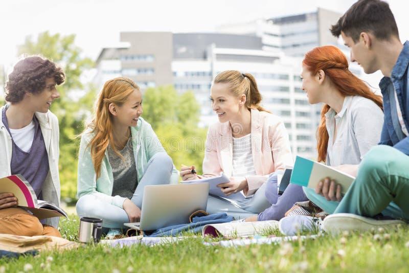一起学习在草的大学生 库存图片