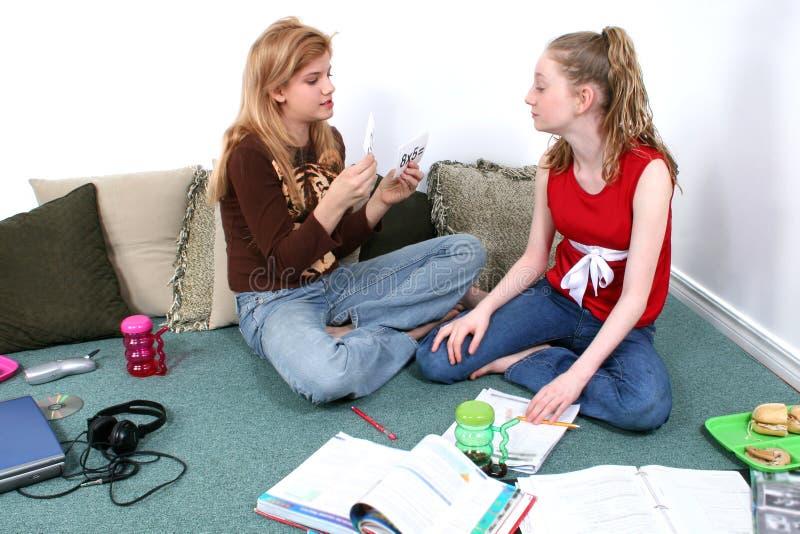 一起执行家庭作业的子项 免版税库存照片