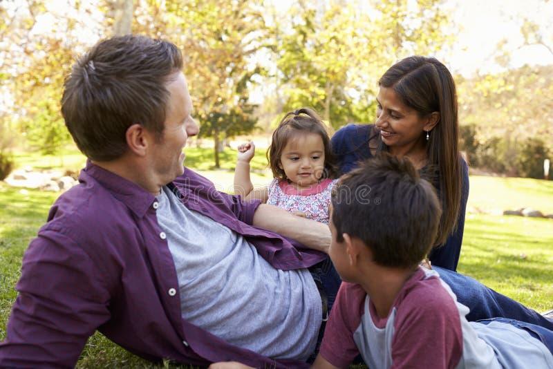 一起放松在公园的年轻混合的族种家庭 库存图片