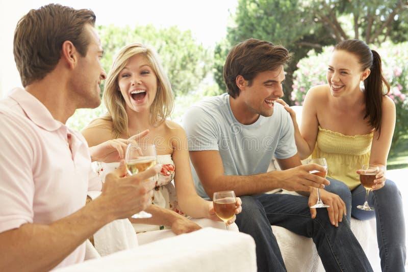 一起放松在沙发饮用的酒的小组年轻朋友 免版税图库摄影