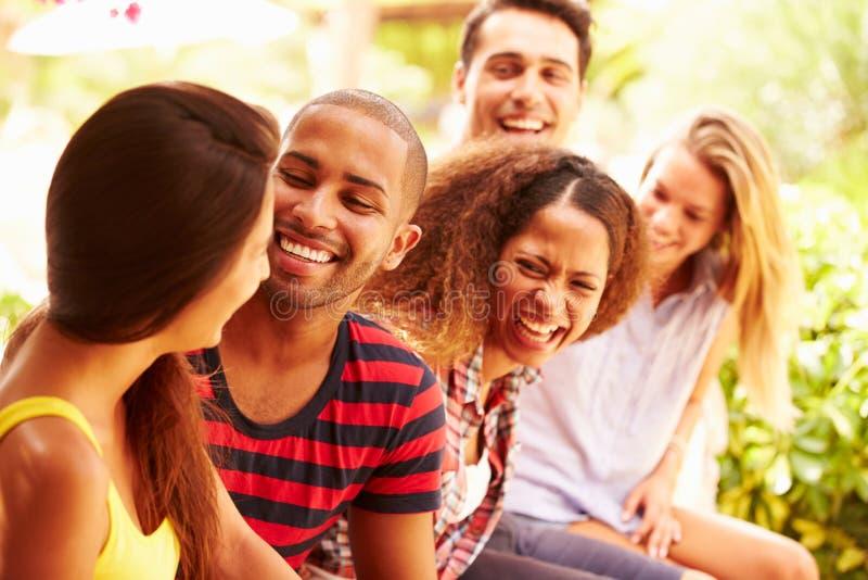 一起放松户外在度假的小组朋友 免版税图库摄影