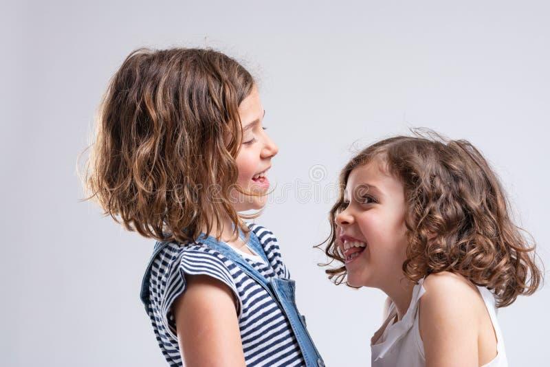 一起笑两个快乐的妹 免版税库存照片