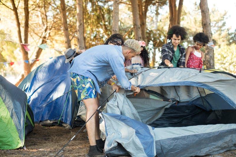 一起设定帐篷的年轻朋友 免版税库存照片