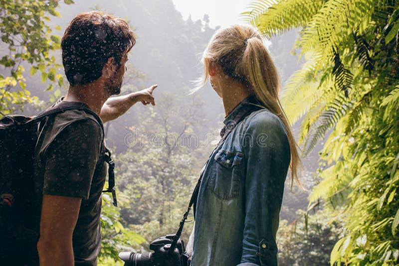 一起调查森林的年轻夫妇 图库摄影