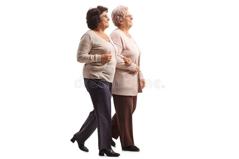 一起走两名年长的妇女 免版税库存图片