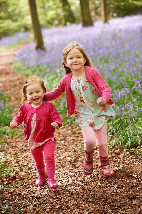 一起跑通过会开蓝色钟形花的草森林的两个女孩 图库摄影