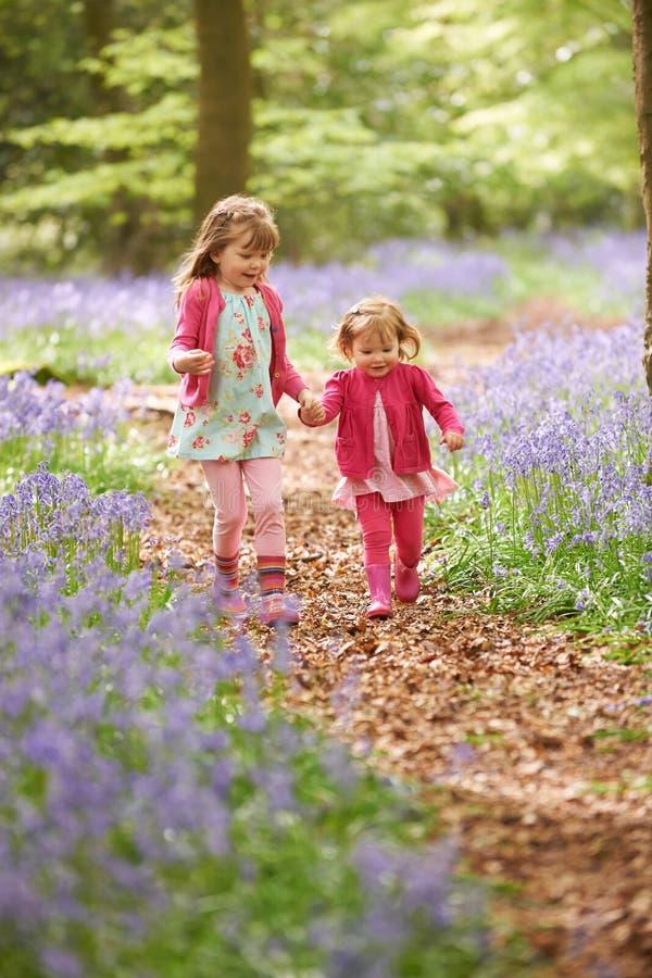 一起跑通过会开蓝色钟形花的草森林的两个女孩 库存照片