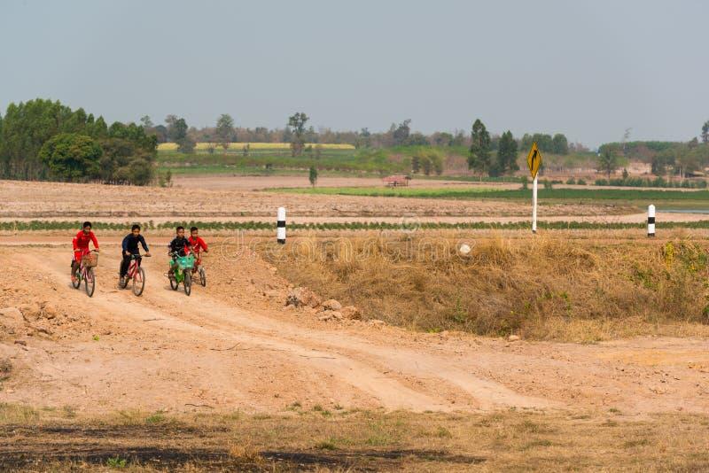 一起骑自行车的小组男孩 免版税库存照片
