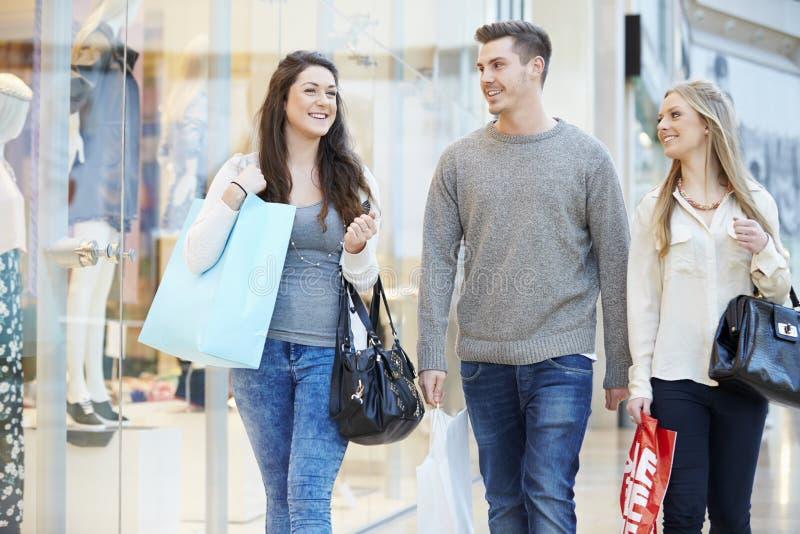 一起购物在购物中心的小组朋友 库存照片